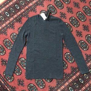 NWT Banana Republic Merino Wool Crewneck Sweater